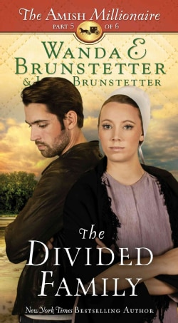 The Divided Family (Paperback)