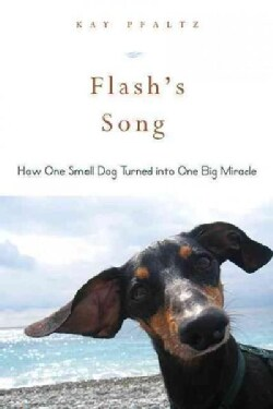 Flash's Song: How One Small Dog Turned into One Big Miracle (Paperback)
