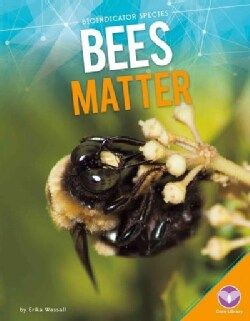 Bees Matter (Hardcover)