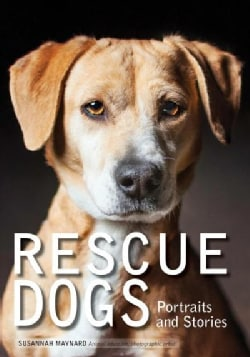 Rescue Dogs: Portraits and Stories (Paperback)