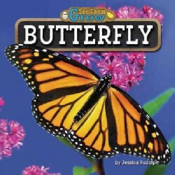 Butterfly (Hardcover)