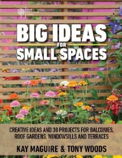 Big Ideas for Small Spaces: Creative Ideas and 30 Projects for Balconies, Roof Gardens, Windowsills and Terraces (Paperback)