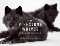 The Pipestone Wolves: The Rise and Fall of a Wolf Family (Hardcover)