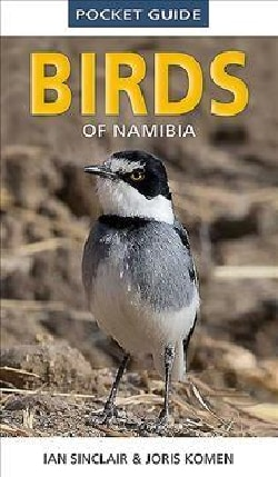 Pocket Guide to Birds of Namibia (Paperback)
