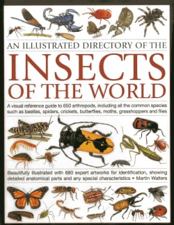 An Illustrated Directory of the Insects of the World: A Visual Reference Guide to 650 Arthropods, Including All t... (Paperback)