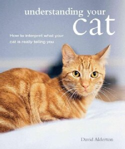 Understanding Your Cat: How to Interpret What Your Cat Is Really Telling You (Paperback)