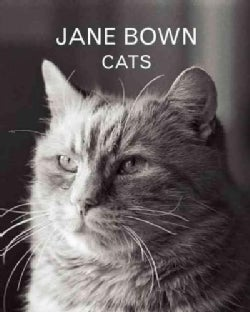 Jane Bown: Cats (Hardcover)