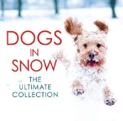 Dogs in Snow: The Ultimate Collection (Hardcover)