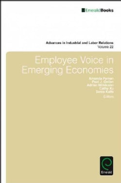 Employee Voice in Emerging Economies (Hardcover)