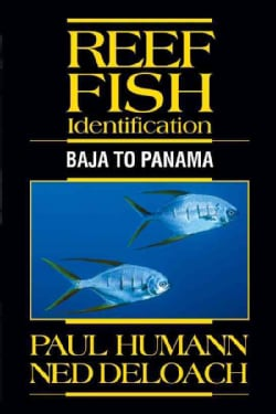 Reef Fish Identification: Baja to Panama (Paperback)