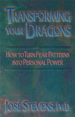 Transforming Your Dragons: Turning Personality Fear Patterns into Personal Power (Paperback)