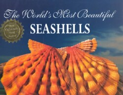 The World's Most Beautiful Seashells (Hardcover)