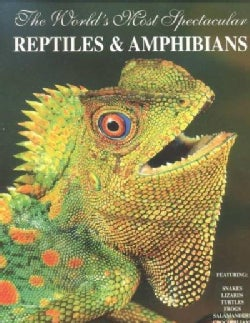 World's Most Spectacular Reptiles and Amphibians (Paperback)