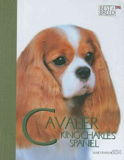 Cavalier K C Spaniel: Pet Book (Hardcover)