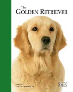 Golden Retriever: Pet Book (Hardcover)
