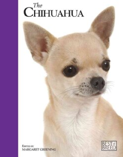 Chihuahua: Pet Book (Hardcover)