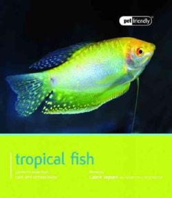 Tropical Fish: Pet Book (Paperback)