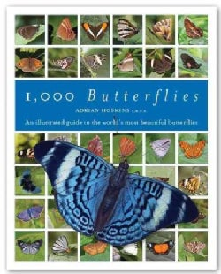 1,000 Butterflies: An Illustrated Guide to the World's Most Beautiful Butterflies, Featuring All the Families, Su... (Hardcover)