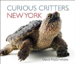 Curious Critters New York (Board book)