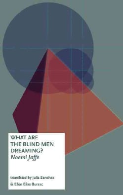 What Are the Blind Men Dreaming? (Paperback)