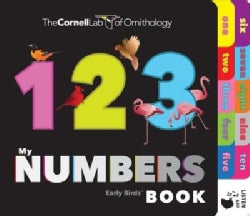 My Numbers Book (Board book)