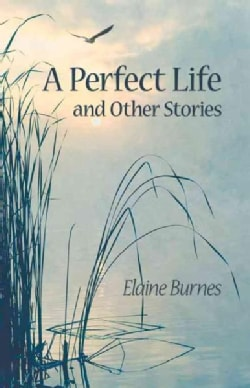 A Perfect Life and Other Stories (Paperback)