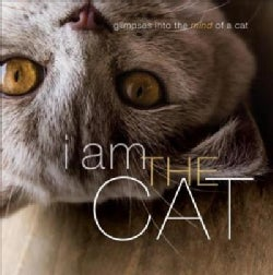 I Am the Cat (Hardcover)