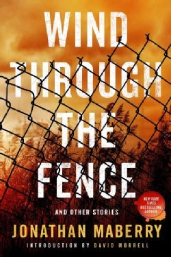 Wind Through the Fence: And Other Stories (Paperback)
