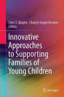 Innovative Approaches to Supporting Families of Young Children (Hardcover)