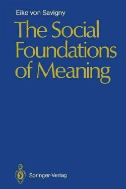 The Social Foundations of Meaning (Paperback)
