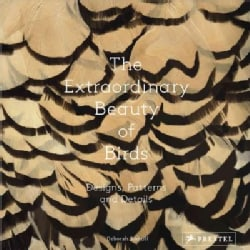 The Extraordinary Beauty of Birds: Designs, Patterns and Details (Hardcover)