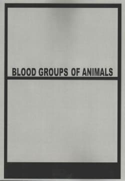 Blood Groups of Animals: Proceedings of the 9th European Animal Blood Group Conference (Paperback)