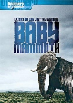 Baby Mammoth: Raising The Mammoth (DVD)