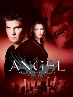Angel: Season 1 (DVD)