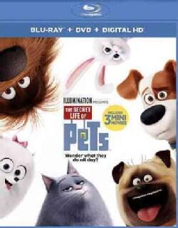 The Secret Life Of Pets (Blu-ray/DVD)