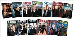 NCIS: Thirteenth Season Pack (DVD)