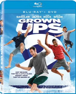 Grown Ups 2 (Blu-ray/DVD)
