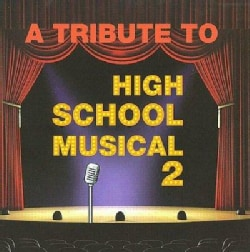 Various - A Tribute to High School Musical 2