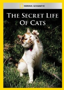 The Secret Life Of Cats (DVD)