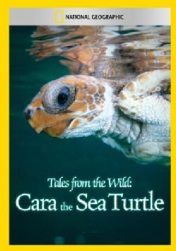 Tales From The Wild: Cara The Sea Turtle (DVD)