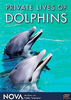 Private Lives of Dolphins (DVD)