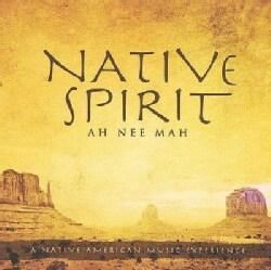 David Arkenstone - Native Spirit