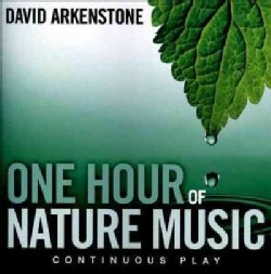 David Arkenstone - One Hour of Nature Music: For Massage, Yoga and Relaxation