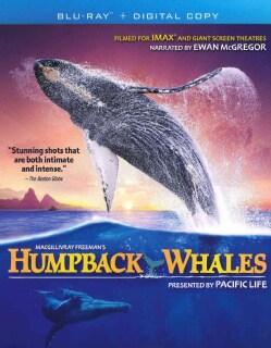 IMAX: Humpback Whales (Blu-ray Disc)