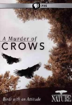 Nature: A Murder of Crows (DVD)