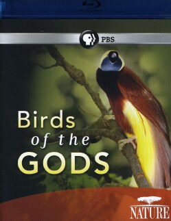 Nature: Birds of The Gods (Blu-ray Disc)