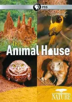 Nature: The Animal House (DVD)
