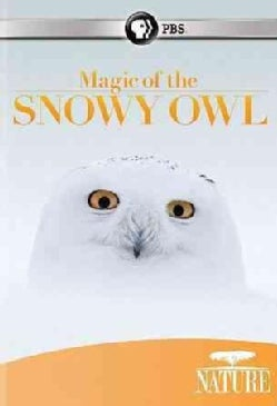 Nature: Magic of the Snowy Owl (DVD)