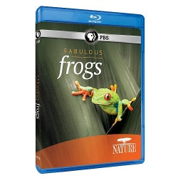 Nature: Fabulous Frogs (Blu-ray Disc)