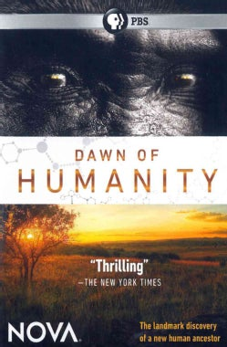 Nova: Dawn of Humanity (DVD)